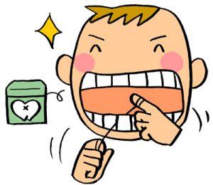 歯みがき86(110301086)